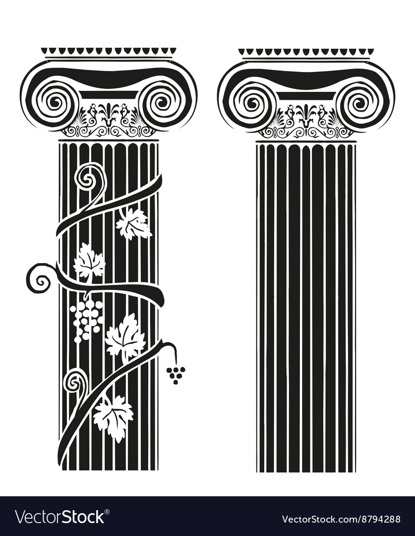 Two columns with grapes vector