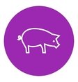 Pig line icon vector image