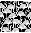 cute graphic flamingo pattern vector image vector image