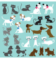 cats and dogs vector image
