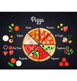 Selection Of Pizza Concept vector image