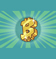 bitcoin cryptocurrency icon symbol sign vector image