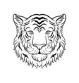 black and white sketch of tigers head face of vector image
