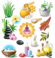 Set of spa treatment symbols vector image