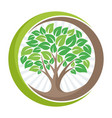 logo with tree concept vector image