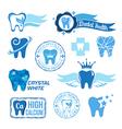 Set of dental decorative elements vector image