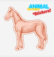farm animal horse in sketch style on colorful vector image