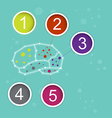 infographic brain concept vector image