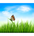 Nature grass butterfly background vector image vector image