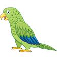 cuta parrot cartoon isolated vector image