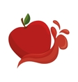 red apple splash vector image