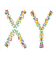 chromosomes X Y on a white background vector image