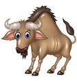 Cartoon Wildebeest mascot isolated vector image