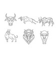 bull and cow line sign and symbol vector image