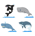 whale cartoon collection for you design vector image