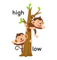 Opposite words high and low vector image