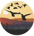 Mallard ducks at sunrise and hilly landscape vector