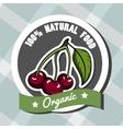 Natural Food 5 vector image