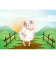 Sheep Holding Sign vector image vector image