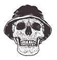 skull in hat vector image