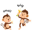 Opposite words small and big vector image
