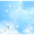 Summer background water drops vector image