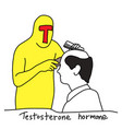 testosterone hormone is to make human bald vector image