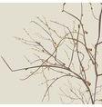 autumn dead branches vector image