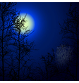 night background vector image vector image