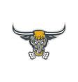 Texas Longhorn Bull Head Front vector image