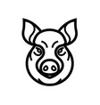 image of swine or pig head vector image