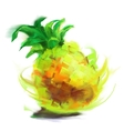 drawing pineapple vector image