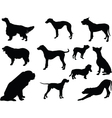 dogs collection 3 - vector image