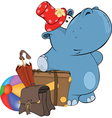 little hippo Cartoon vector image vector image