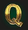 q golden letter vector image vector image