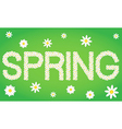 Spring tag composed from daisy flowers vector image