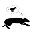 Dog dreams vector image vector image