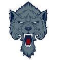 roaring wolf vector image