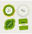 Set of organic food badges and labels vector image