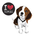 i love beagle vector image
