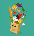 Supermarket bag vector image
