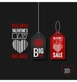 Valentines Day Set of Sale Tags design Background vector image