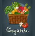 basket of fresh vegetables poster vector image