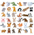 cartoon animal set vector image