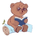 Bear reading book vector image
