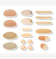 Bread collection vector image vector image