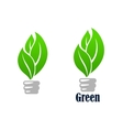 Green light bulb with leaves vector image vector image
