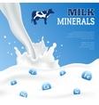 Milk Minerals Poster vector image