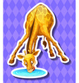 Cute giraffe drinking water from the puddle vector image