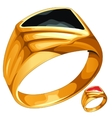 Mens yellow gold ring with expensive stone vector image